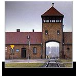 visite ad Auschwitz
